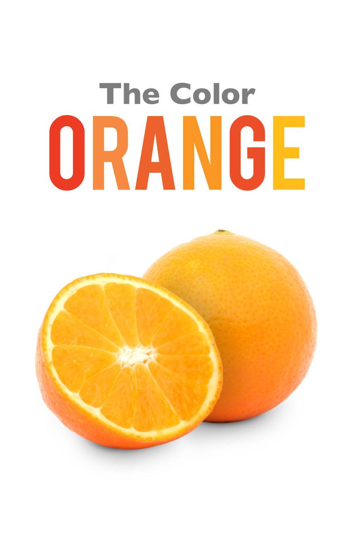 Oh Oh Orange On Pinterest Orange Orange Roses And