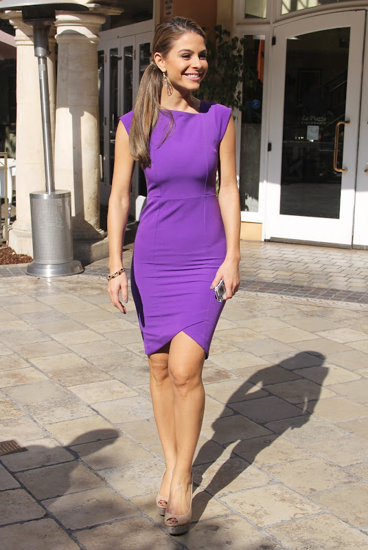 Maria Menounos in  a Purple Dress