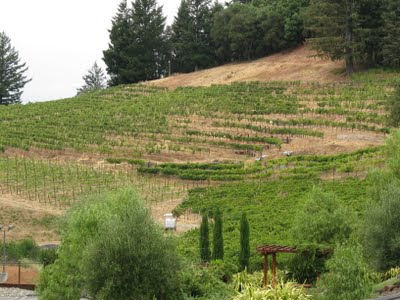 Don't forget about Santa Cruz Mountains Wine Passport Day