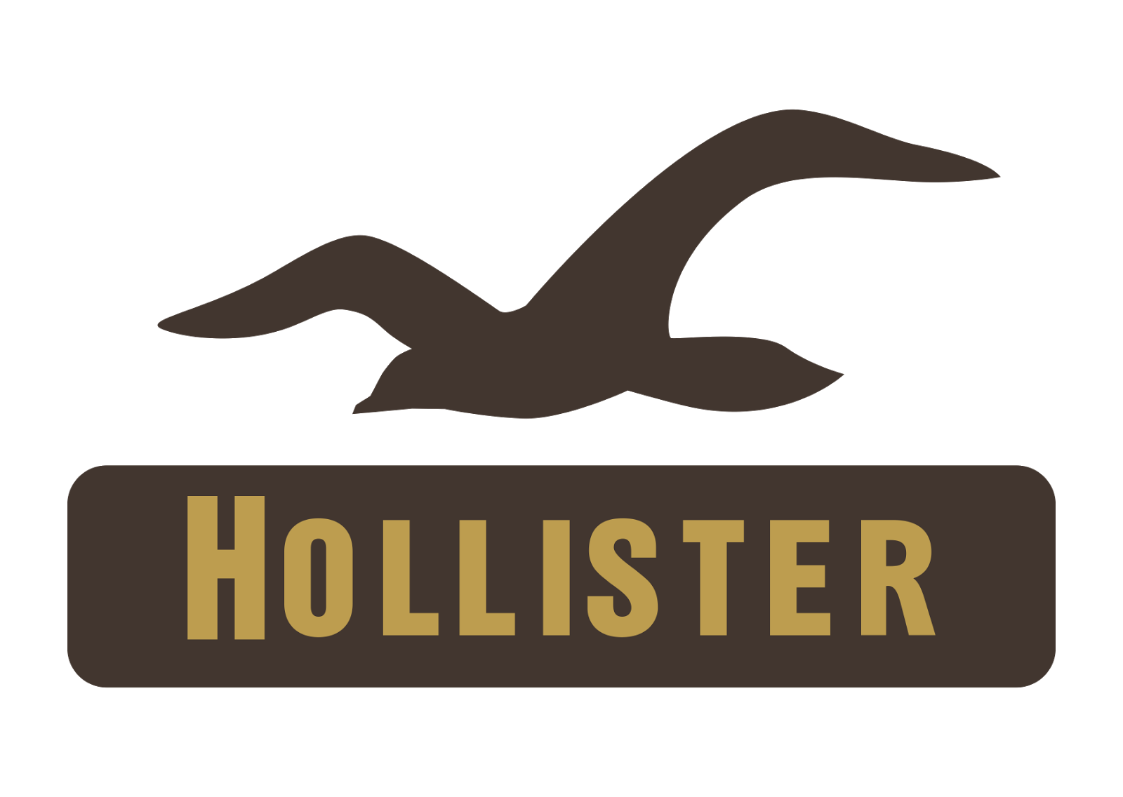 Hollister co logo vector concept store company format Hollister design