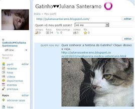 O Gatinho agora está no orkut!!!