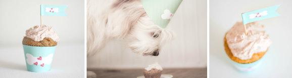 Rezept Hunde Muffin mit Cupcake Wrapper zum kostenlosen Download