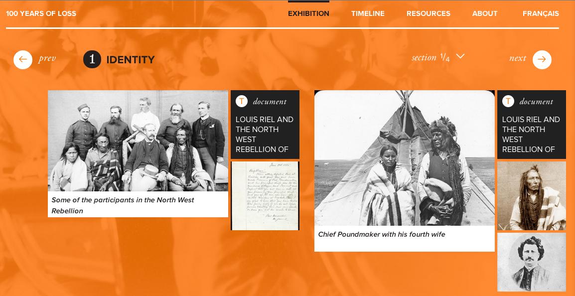 100 Years of Loss Digital Exhibition Screenshot.