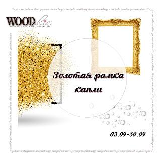 """Задание """"Золотая рамка, капли"""" 30/09"""