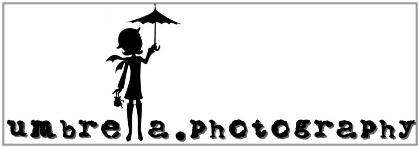 "Umbrella Syndicate: Contoh gambar frame 11""x14"""