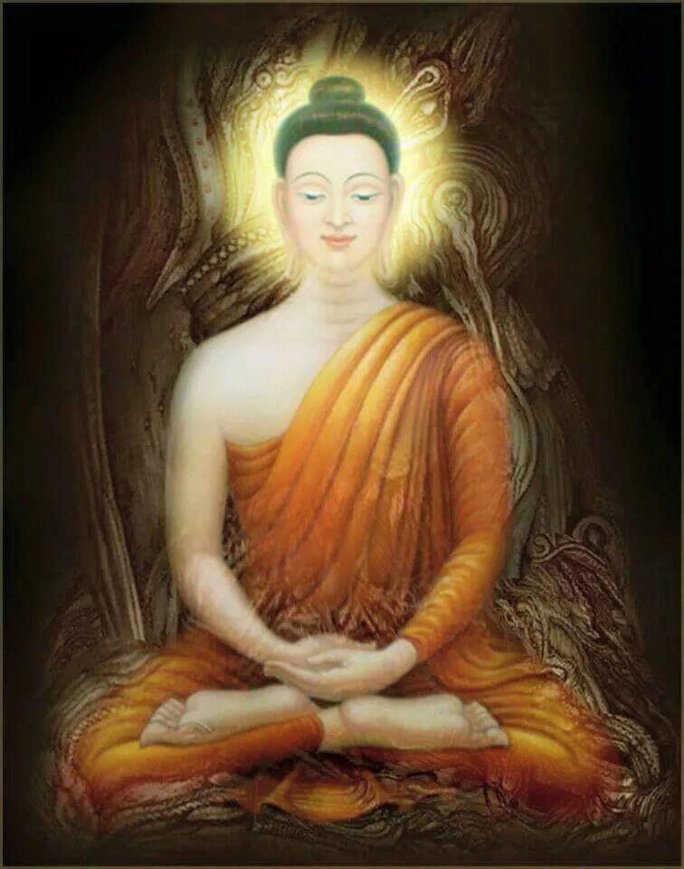 Dharma-notebooks