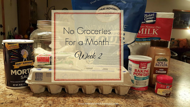 No Groceries for a Month Week 2