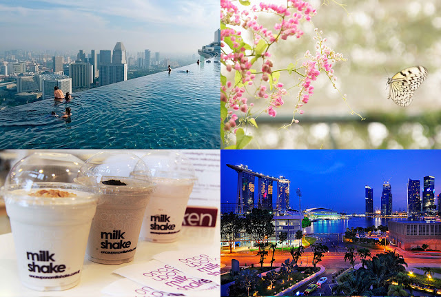 Singapore Photo Collage