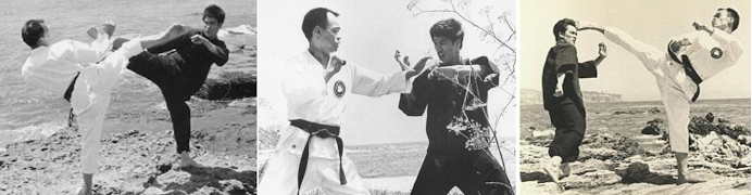 HOW BRUCE LEE LEARNED TAEKWONDO KICKING PROWESS