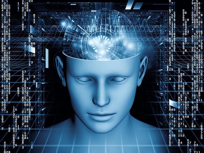 Entirely New Communication Channels Conducting Light Found in the Brain Mind-matrix