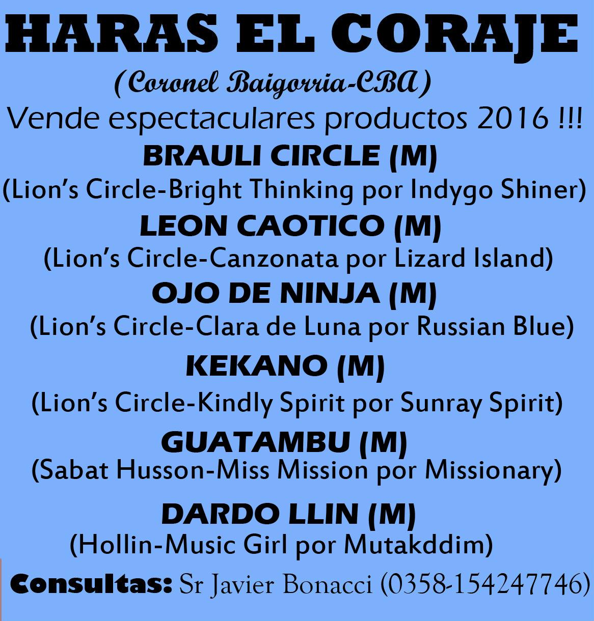 HS EL CORAJE PRODUCTOS 1