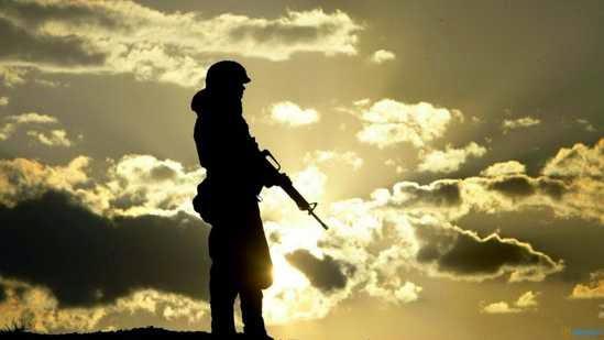 Sombra de soldado