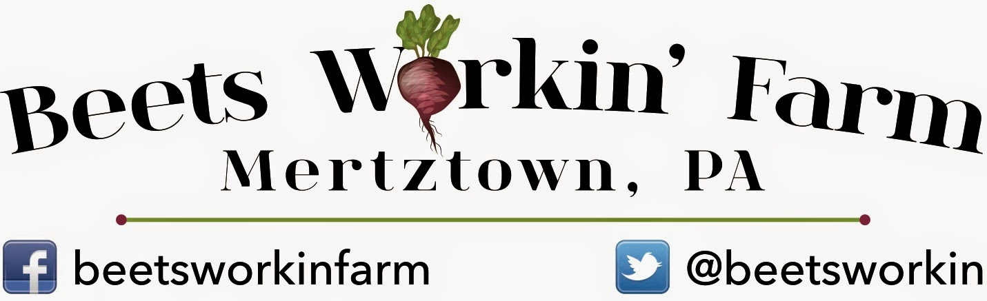 Beets Workin' Farm