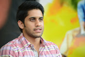 Naga Chaitanya photos-thumbnail-10