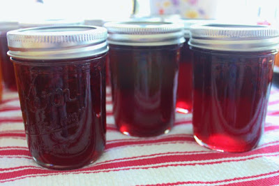 canning Cherry jam