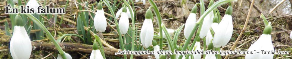 """<a href=""""http://enkisfalum.blogspot.hu/"""">Én kis falum</a>"""