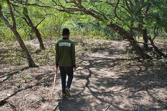 Ranger caminando
