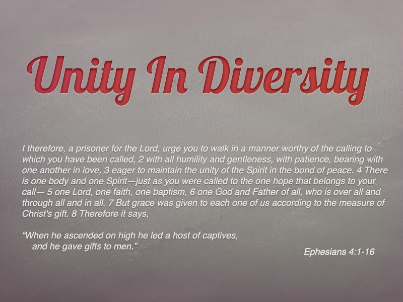 meaning for unity in diversity What do we mean by diversity the christian vision of diversity is based upon two fundamental doctrines of holy scripture: (1) the unity of the human race, and (2) the universality of the christian church.