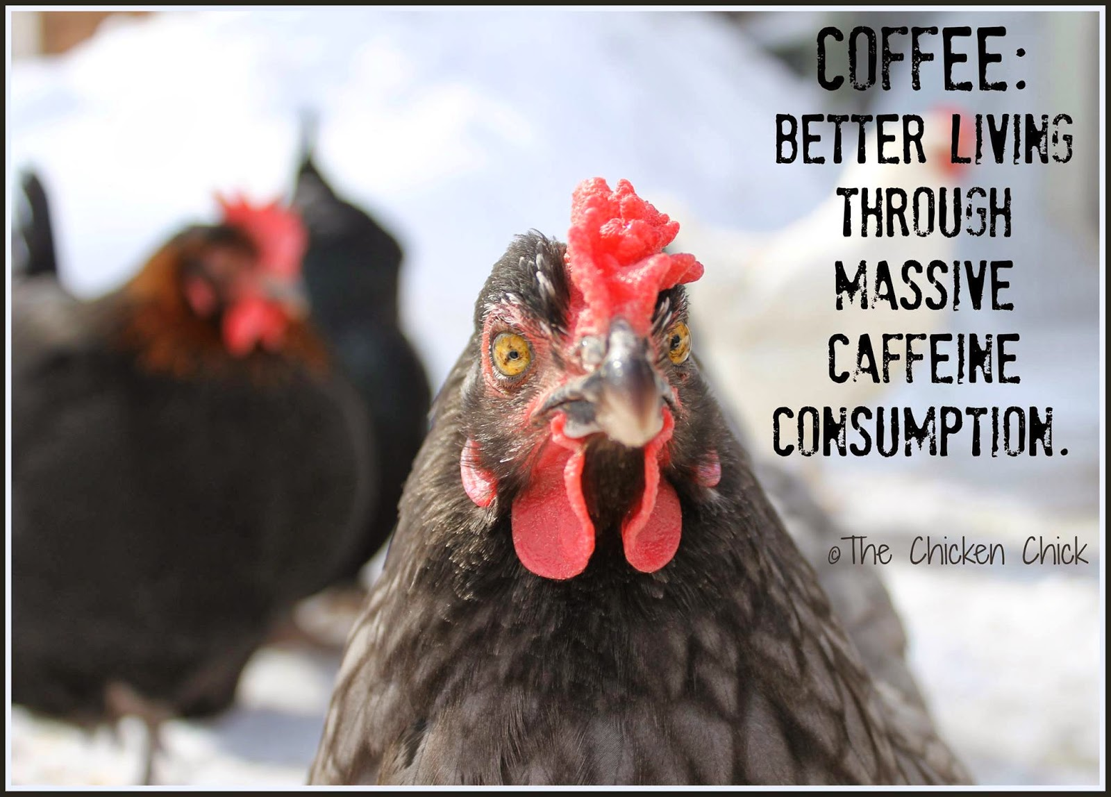 COFFEE: Better living through massive caffeine consumption.
