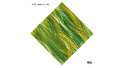 """WILD BEASTS """"Stray"""""""