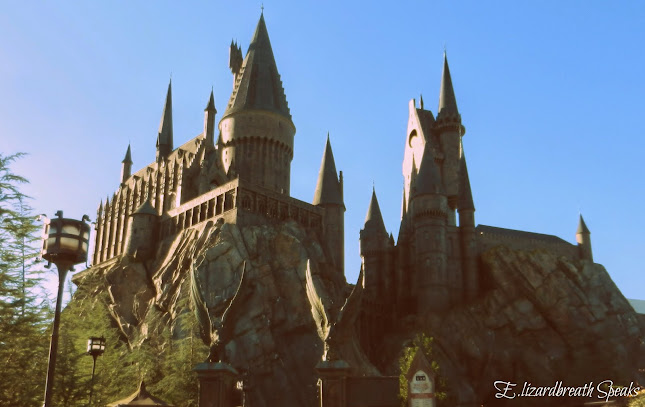 Harry Potter, Florida
