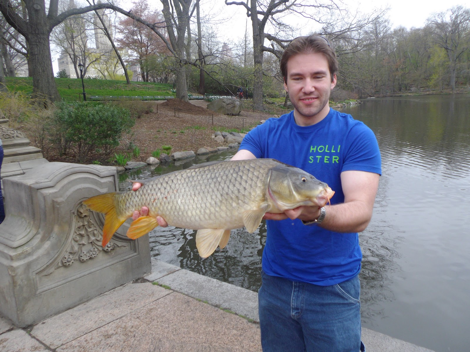 Fly fishing for carp in central park the great lakes of nyc for Fly fishing carp