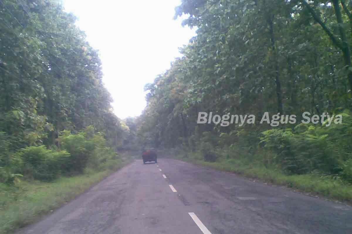 jalan perbatasan lamongan Jombang
