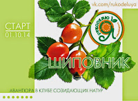 Őszi közös hímzés Fatinikával / Herbst-SAL mit Fatinika