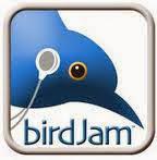 Birdjam