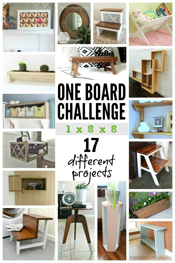 one boar challenge diy bloggers