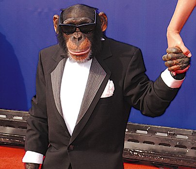 monkey%2Btuxedo%2B2.jpg