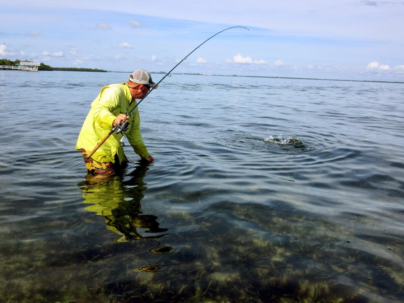 River mud surf fishing southwest florida for Surf fishing florida