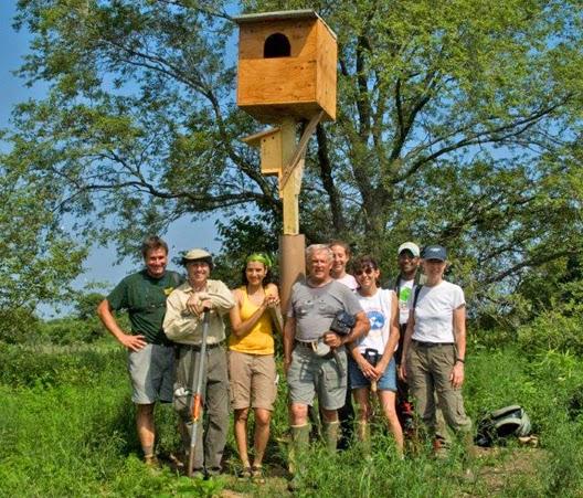 BAOW Nest Box