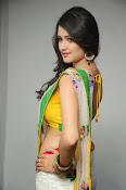 Kushi glamorous saree photos-thumbnail-10