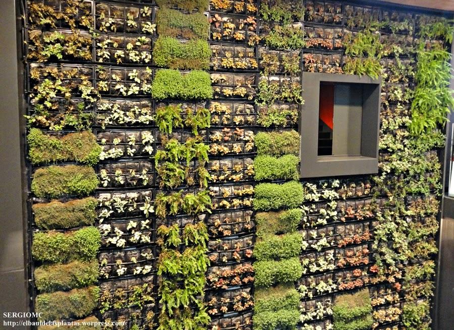 jardin vertical mercado toledo