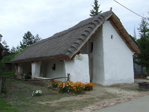 I adore OLD HOUSES...my great grandma lived in a clay and straw cottage like this