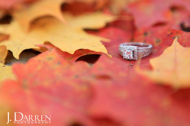 photo of the rings from a Fall engagement session reynolda gardens in winston salem
