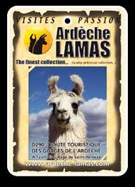 Ardeche lamas