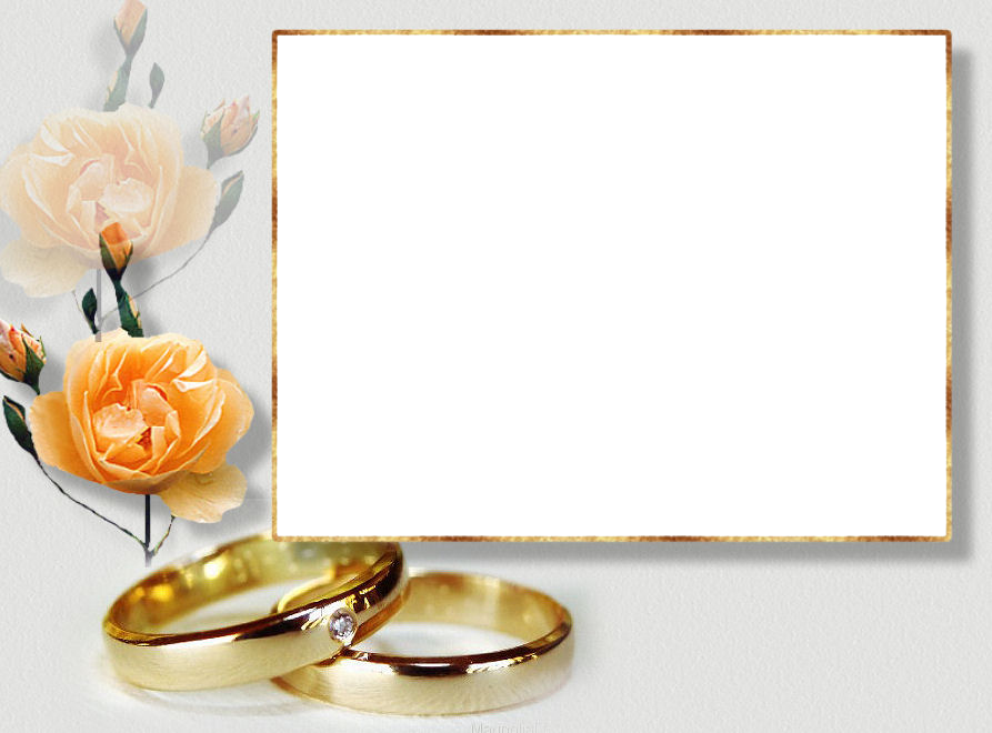 56173 Gold Blush Watercolour Flowers Collection moreover Married Couples 2229443 additionally 97291059 as well Flowers variety of colors moreover Atemberaubend Hochzeit Ringe Symbol Schwarz Weiss Realistic Wedding Rings Isolated Stock Photo Picture An. on anillos de matrimonio with transparent background