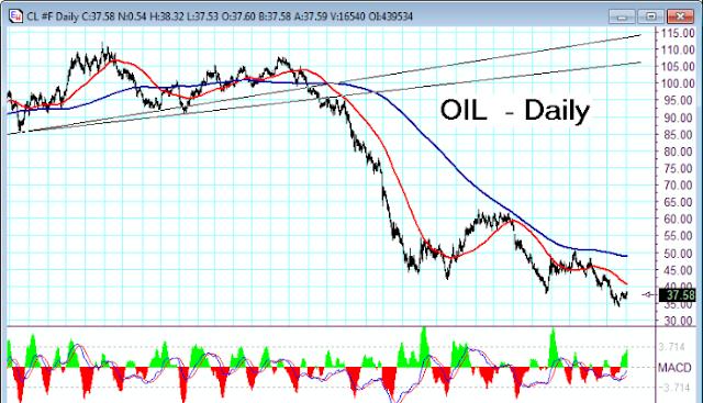 oil%2B2.png