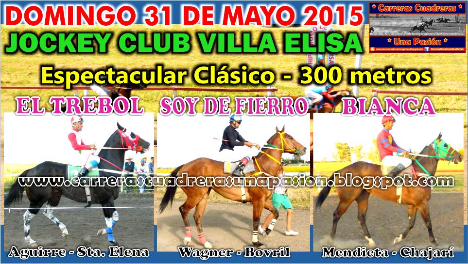 VILLA ELISA - CLASICO 300
