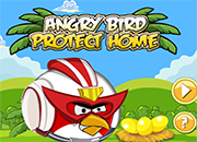 Angry Birds Protect Home