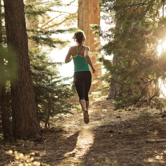 Trail running is a great workout for overall fitness