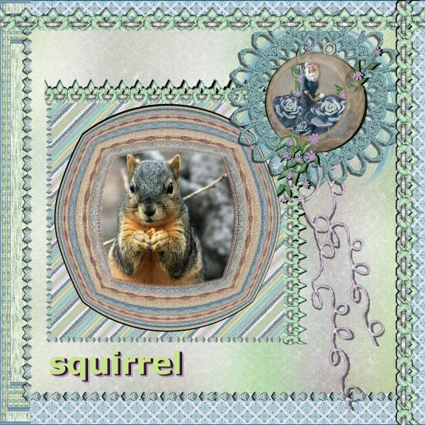 April 2016 Squirrel