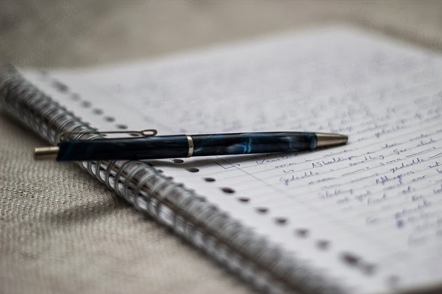 Homeschool Blog, Bernice, Jan Zieba, Tagebuch schreiben