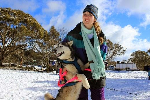 The Sled Dog Challenge takes place in Dinner Plain Alpine Village in the heart of Victoria's High Country. The annual race is the longest running event of its kind and attracts a crowd from all over the nation.