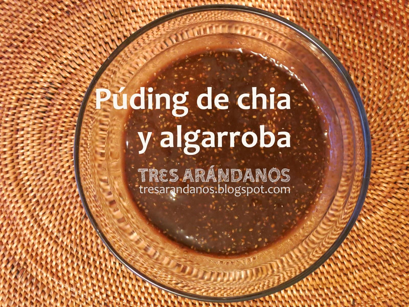 pudding de semillas de chia y algarroba