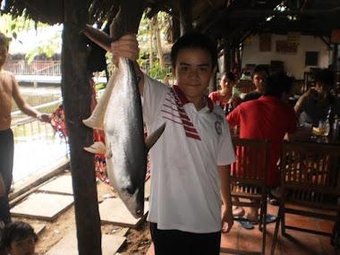 cá câu dưới hồ T11-12