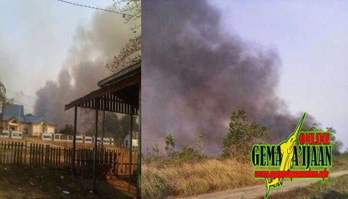 Hutan Terbakar, Warga Bakau Cemas
