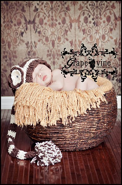 Newborn kissimmee florida baby photography